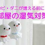 【今すぐできる】部屋の湿気対策!カビ・ダニを防ぐ簡単な除湿法7選!